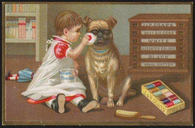 【昔も今もイヌが好き!】人間の冗談に付き合わされる犬たちの写真7選 | the WOOF イヌメディア